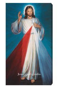 Blue Hyla Divine Mercy 10 x 18 Canvas Print