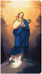 Immaculate Conception, 10x18, Gallery Wrap