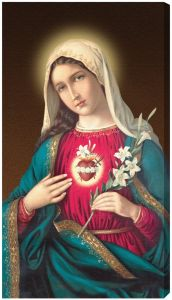 Immaculate Heart of Mary 10 x 18 Canvas, Gallery Wrap image