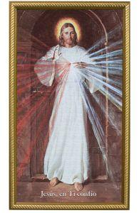 Spanish Skemp Divine Mercy, 10X18, Canvas, Gold Frame