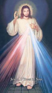Hyla Divine Mercy Print Bundles