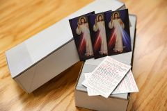 Hyla Divine Mercy Prayercard Bundles